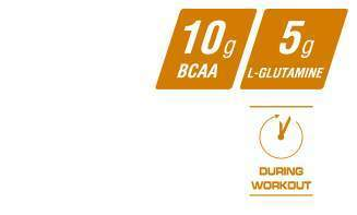 Reflex BCAA Intra Fusion Key Facts